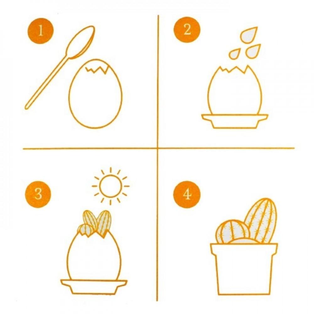Яйчице с кактус